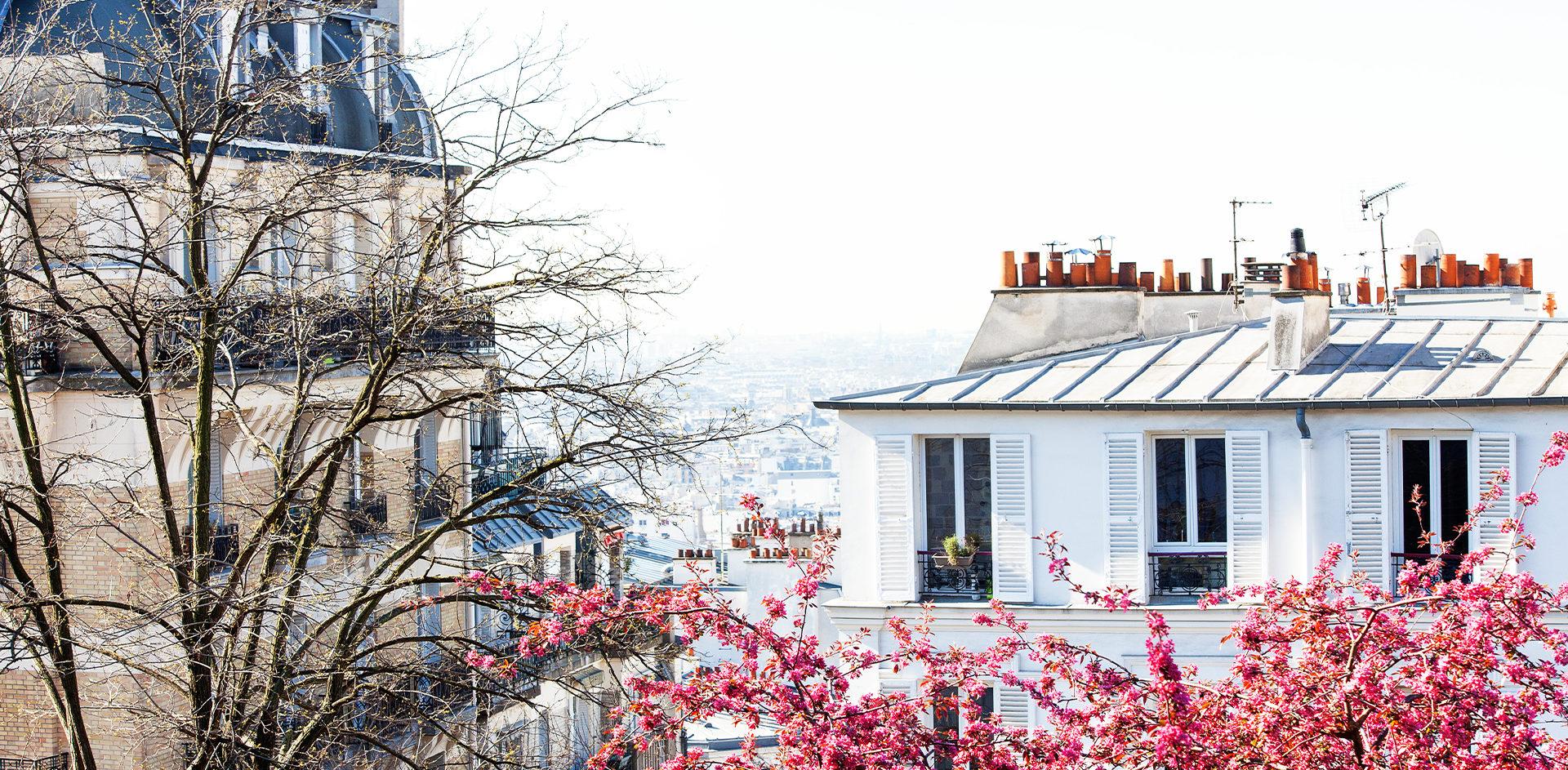 Haussmann Paris fleurie